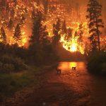 塩山紀生が住む三郷団地の出火の原因は?シルクスクリーンはどこに?